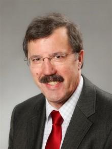 Karl-Heinz Boll, Fraktionsvorsitzender